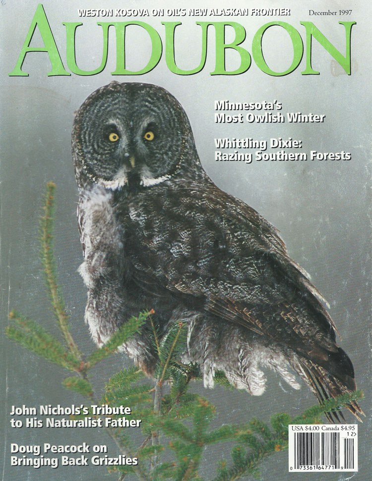 Making the West Safe for Grizzlies, Audubon, December 1997